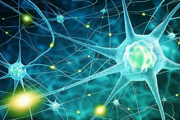 NWTX_Servicios para accidente cerebrovascular