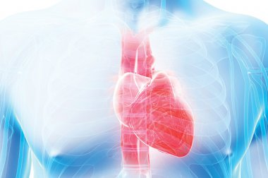 Atención cardiológica por expertos cerca de casa